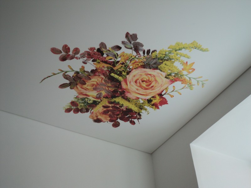 Фото - Тканевый натяжной потолок «Дескор FR print»